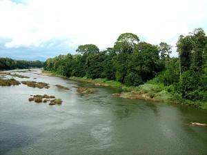 Chaliyar_River