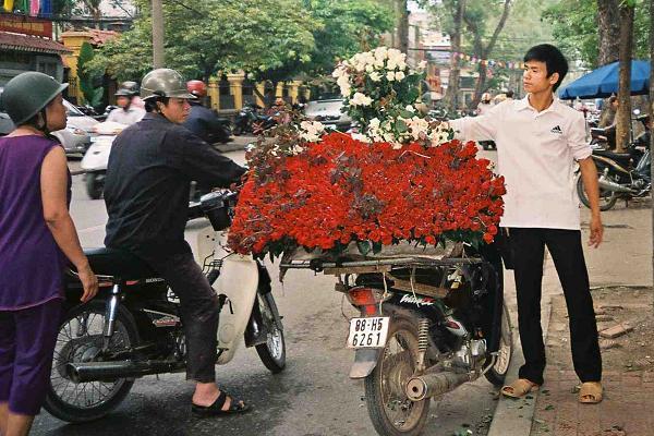roses-on-motorbike
