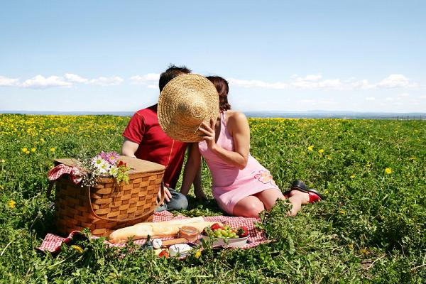 Image result for Romantic picnic