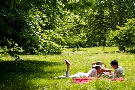 romantic-picnic-02