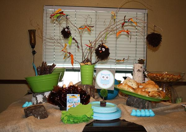 Owl-baby-shower-decorationsj.pg