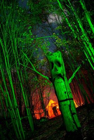 hunted-trees