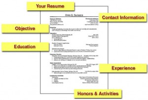 How To Make A Resume - Easyday