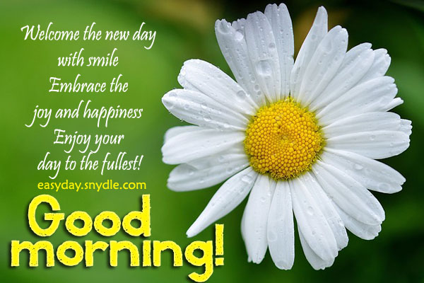 Good Morning Messages, SMS and Good Morning Quotes - Easyday
