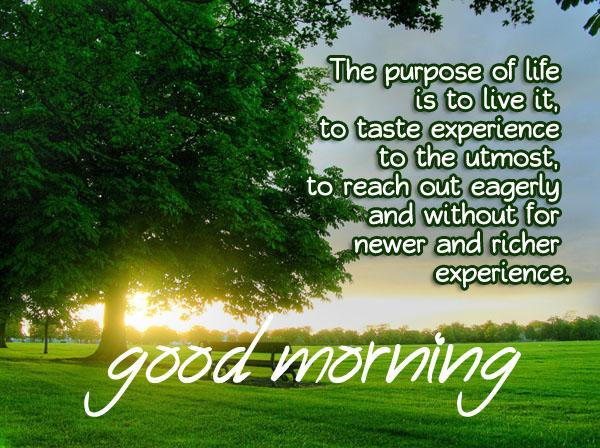 Good Morning Inspirational Quotes: Good Morning Messages, SMS And Good Morning Quotes
