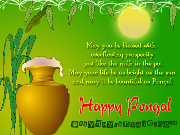 happy-pongal-greetings