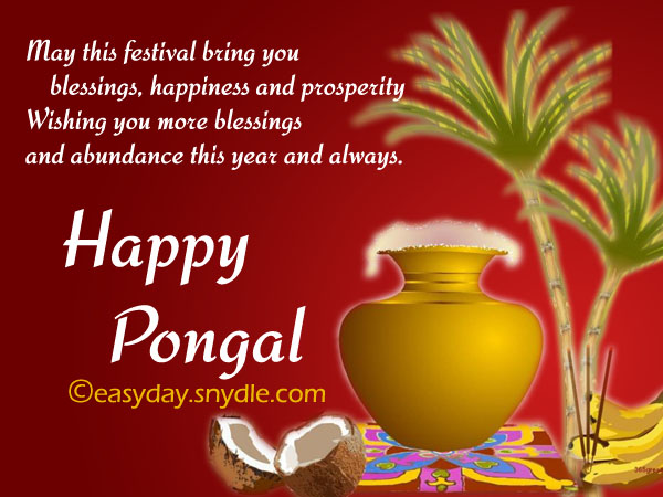 Pongal wishes messages and pongal greetings easyday pongal wishes picture m4hsunfo
