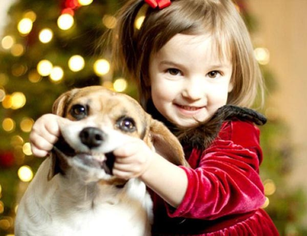 top 10 small dog breeds your kids love to have easyday - Small Kids Images