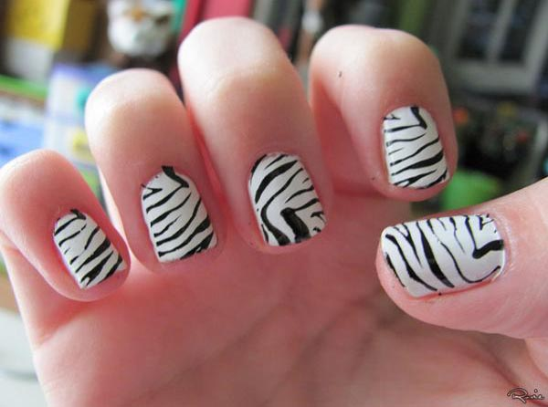 zebra-short-nail-designs