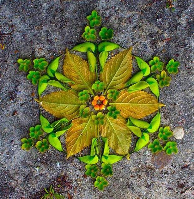 leaf_rangoli