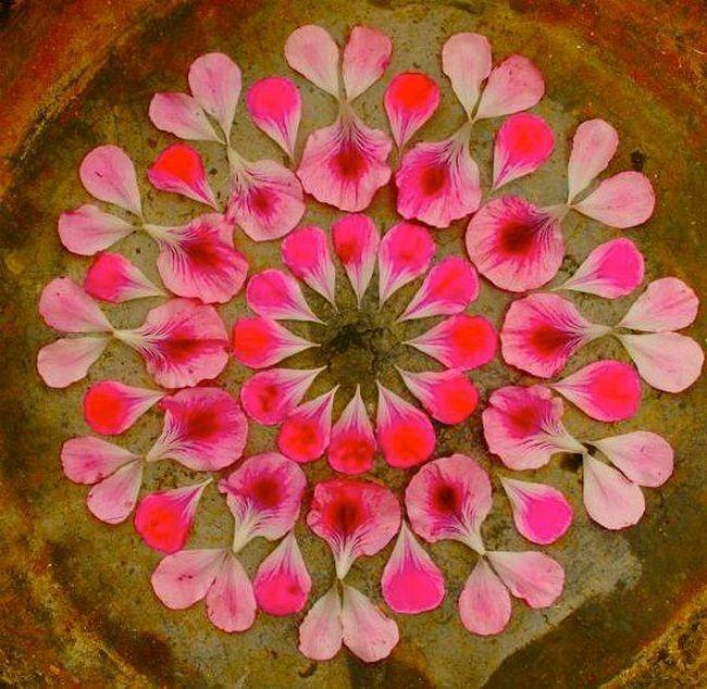 petals_rangoli