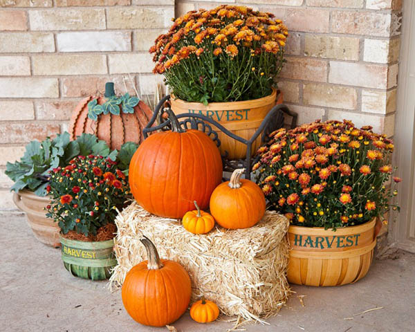Outdoor Thanksgiving Decorations Ideas 3
