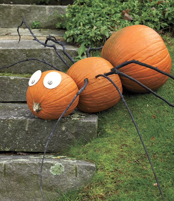 decorating-with-pumpkins