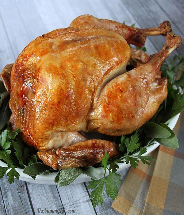 thanksgiving turkey recipes 14