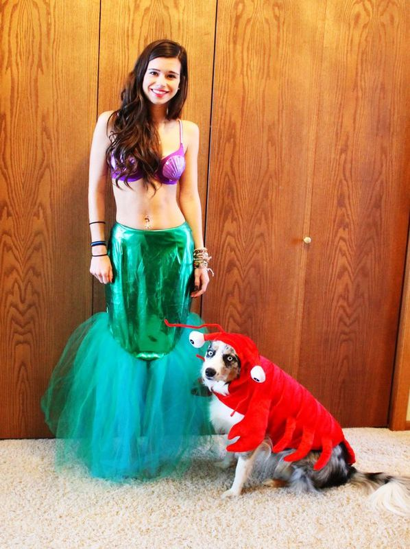 halloween-costumes-for-dogs-11