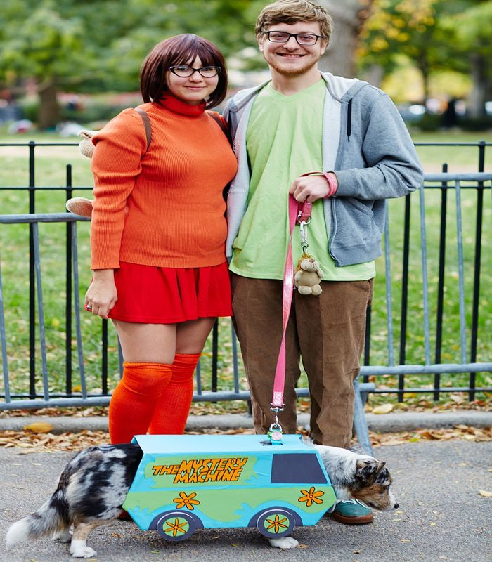 halloween-costumes-for-dogs-17