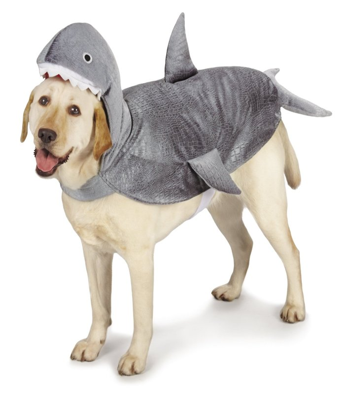halloween-costumes-for-dogs-19