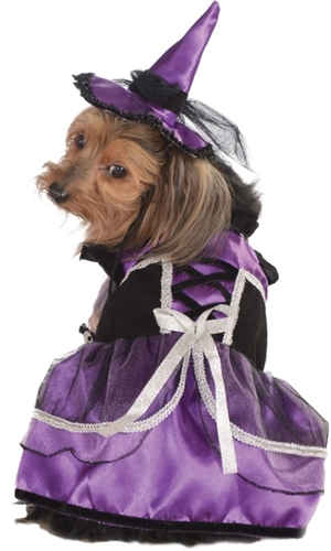 halloween-costumes-for-dogs-21