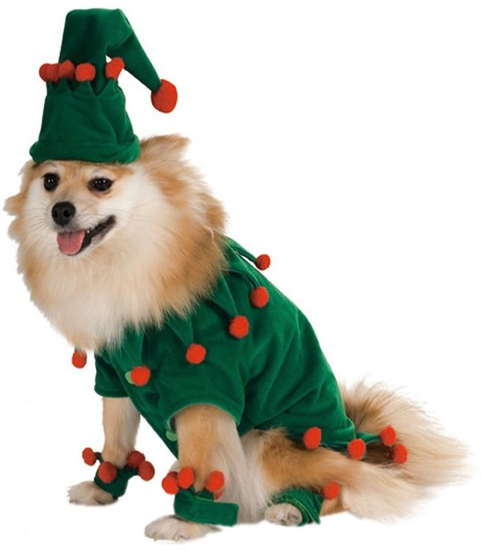 halloween-costumes-for-dogs-25