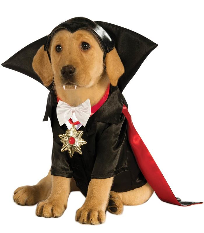 halloween-costumes-for-dogs-3